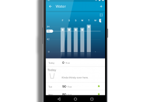 Water Log in FitBit