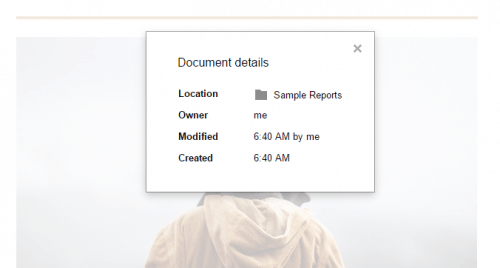Document Details in Google Docs