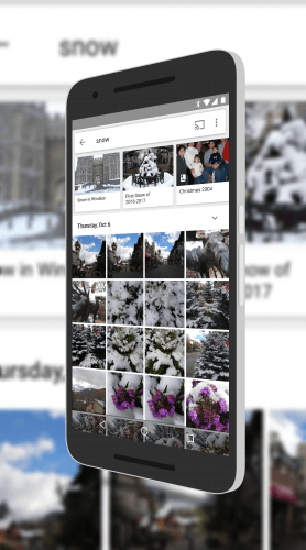 Google Photos Shows Albums in Search Results
