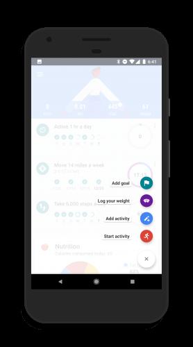 Add A Goal in Google Fit