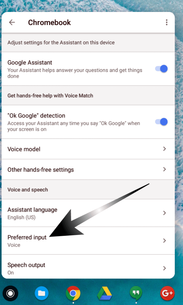 Voice as Default Input in Google Assistant on The Pixelbook