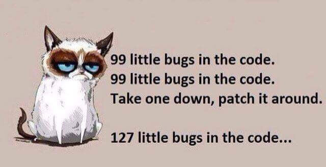 Bugs in the Code